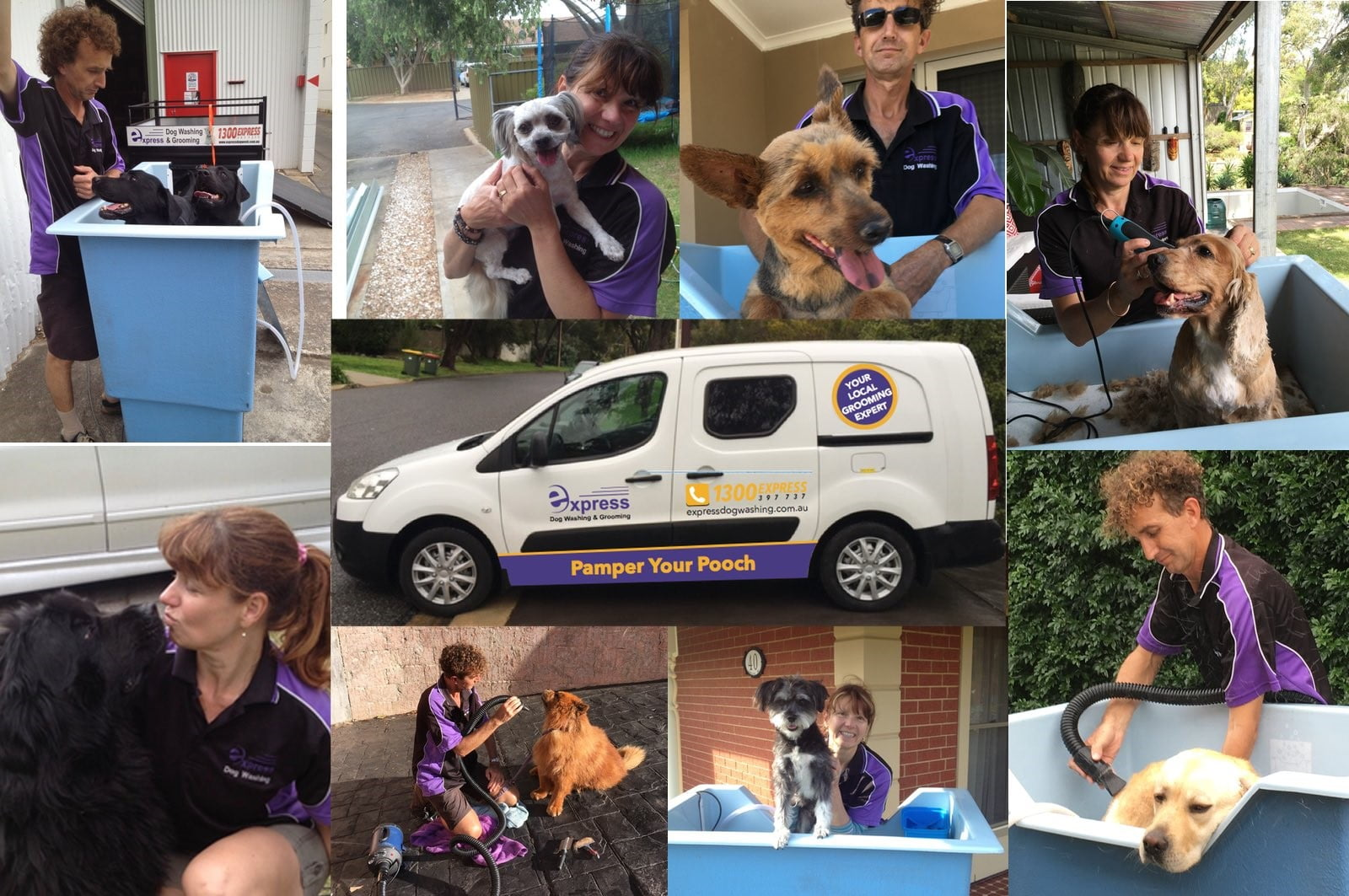 Dog Grooming Surrey Downs