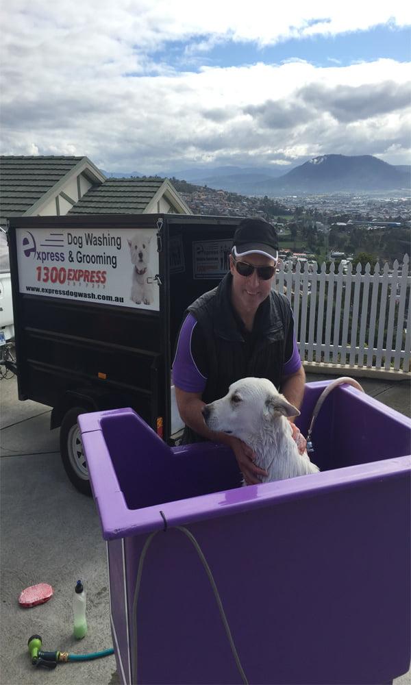 Mobile dog wash mornington express dog wash solutioingenieria Choice Image